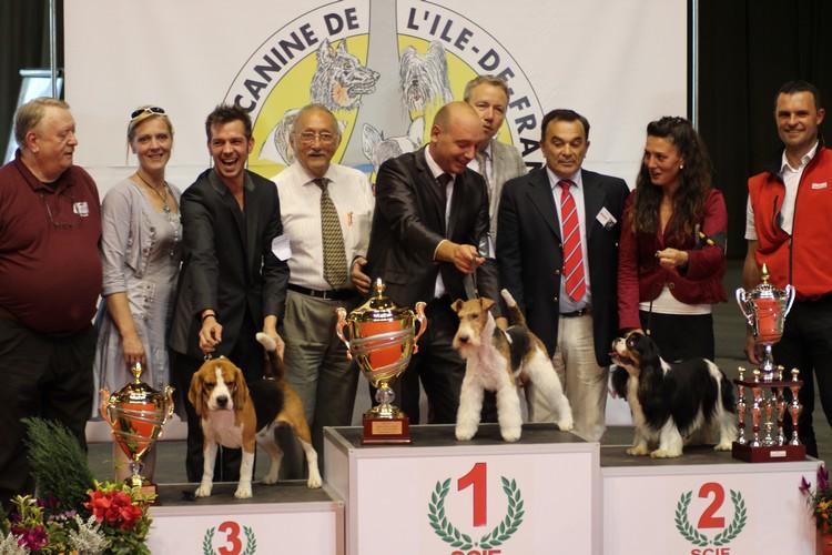 Pontoise 2012