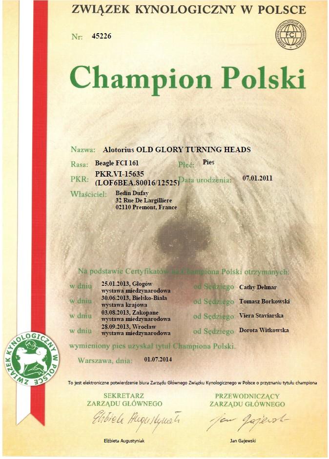 Champion Pologne